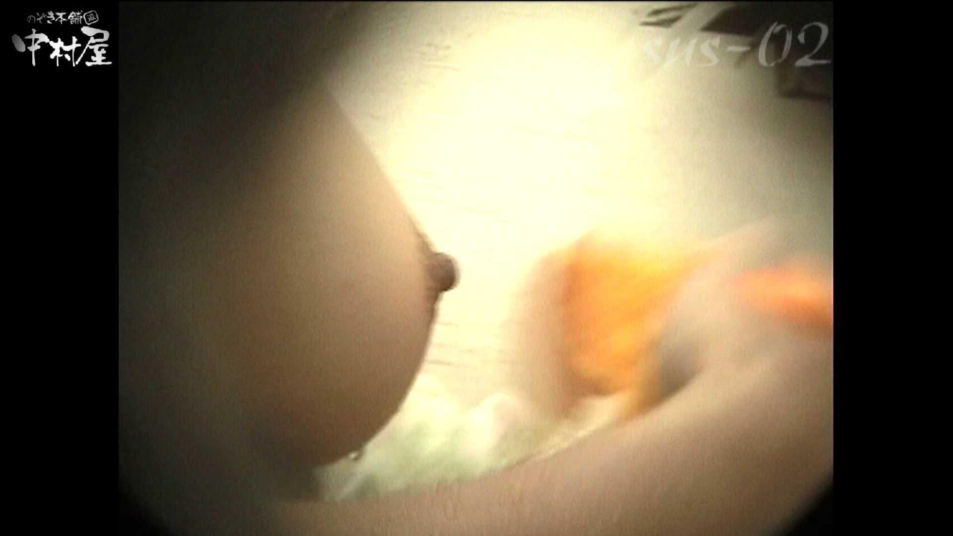 エロ動画:No.8 お下髪のおねえちゃん、見事なお椀型乳:のぞき本舗 中村屋