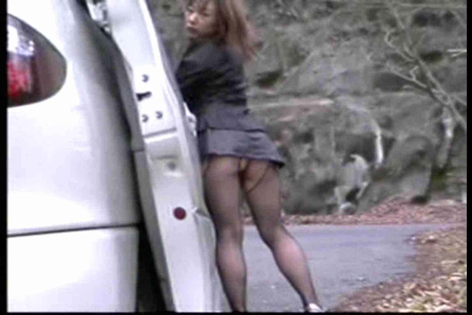 エロ動画:美熟女の野外露出プレイ2:大奥