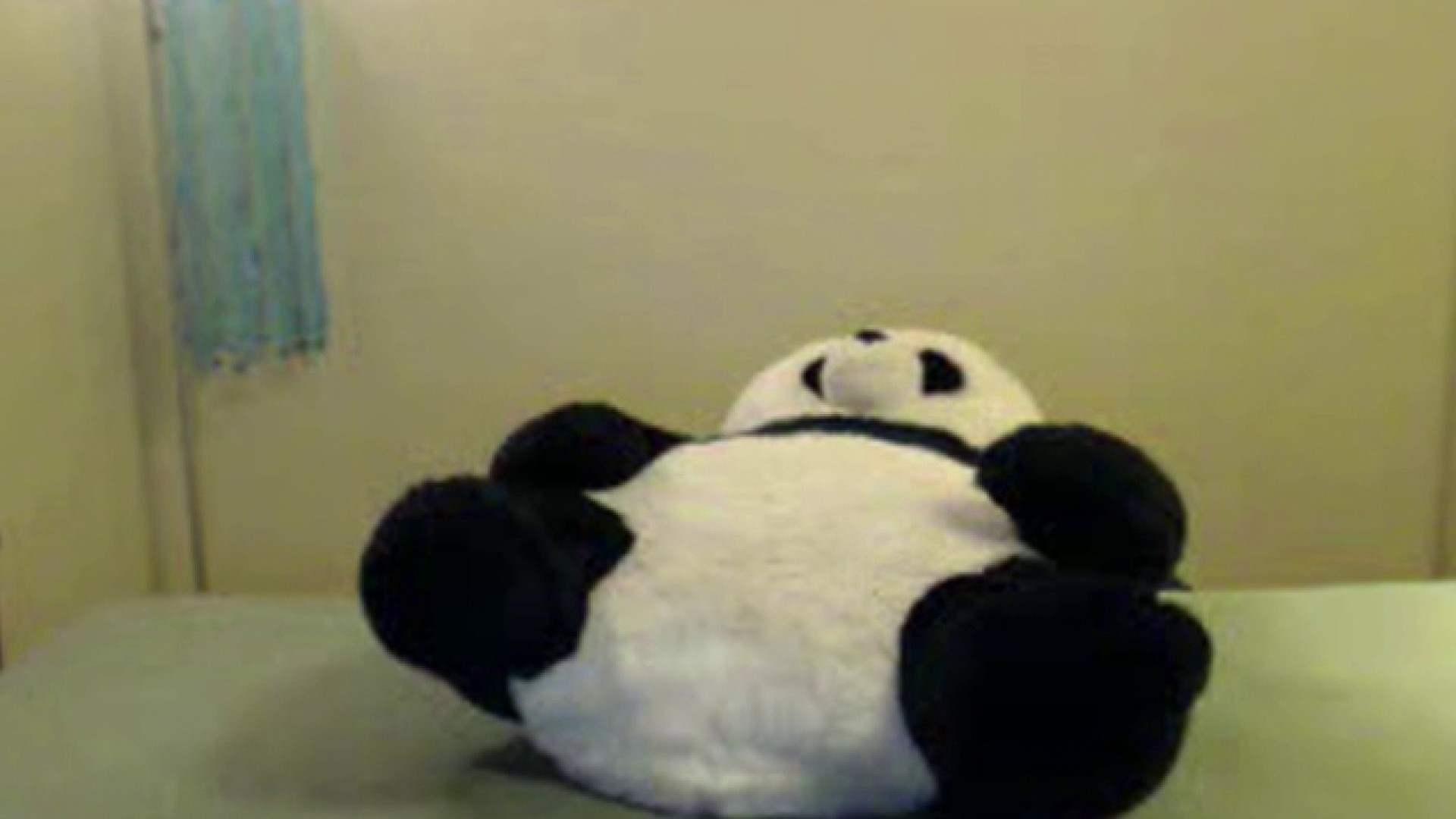 おしえてギャル子のH塾 Vol.32 美女OL ぱこり動画紹介 84連発 10