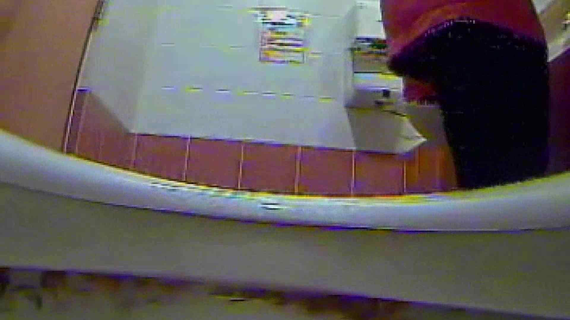 キレカワ女子大生の秘密の洗面所!Vol.015 放尿シーン おまんこ動画流出 49連発 39