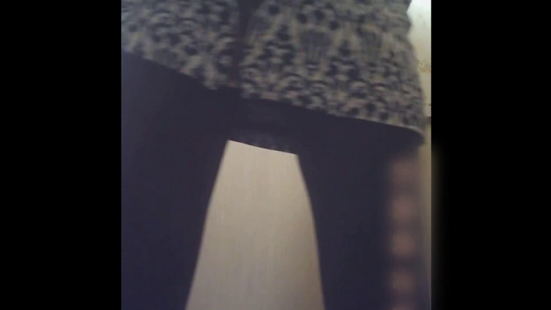 潜入!!韓国秘密のトイレ!Vol.08 美女OL われめAV動画紹介 65連発 30