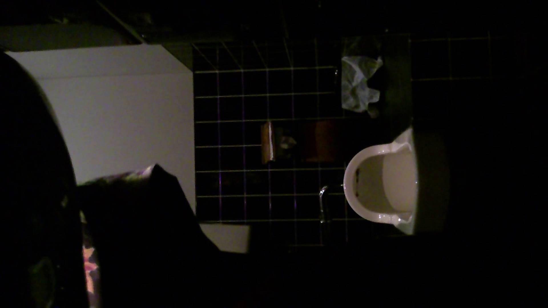 美女の集まる飲み屋洗面所 vol.04 モデル 盗み撮り動画キャプチャ 109連発 88
