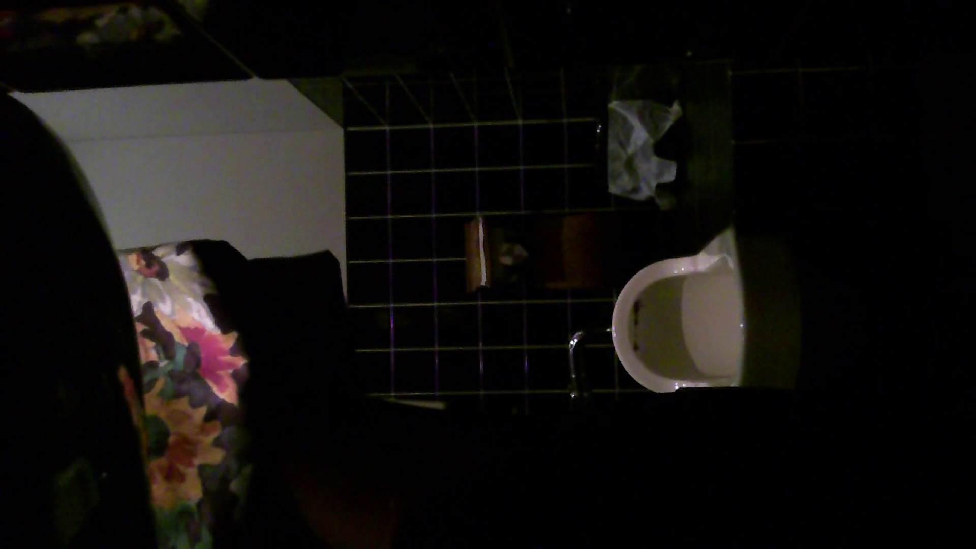 美女の集まる飲み屋洗面所 vol.04 美女 すけべAV動画紹介 109連発 97