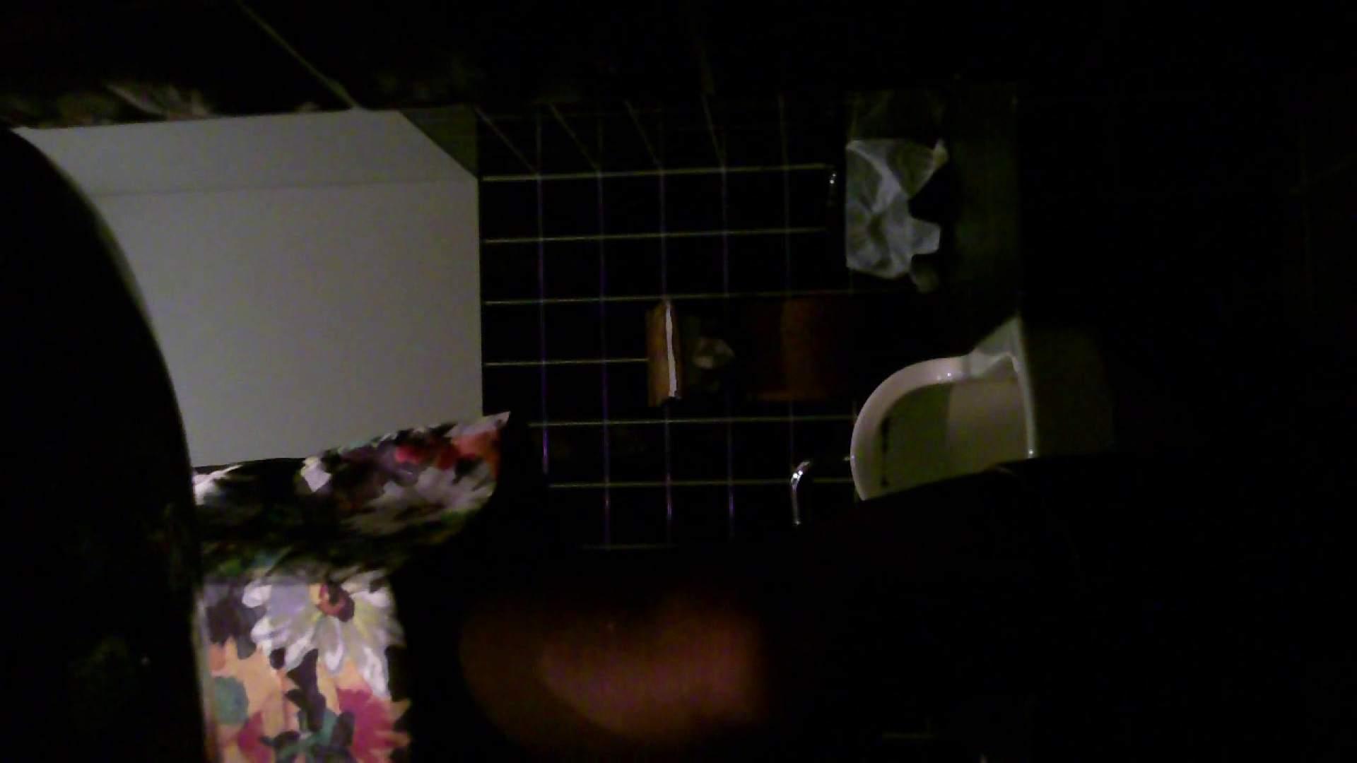 美女の集まる飲み屋洗面所 vol.04 美女 すけべAV動画紹介 109連発 107