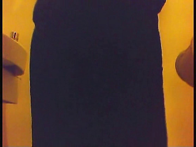 漏洩厳禁!!某王手保険会社のセールスレディーの洋式洗面所!!Vol.1 洗面所 ワレメ動画紹介 66連発 3