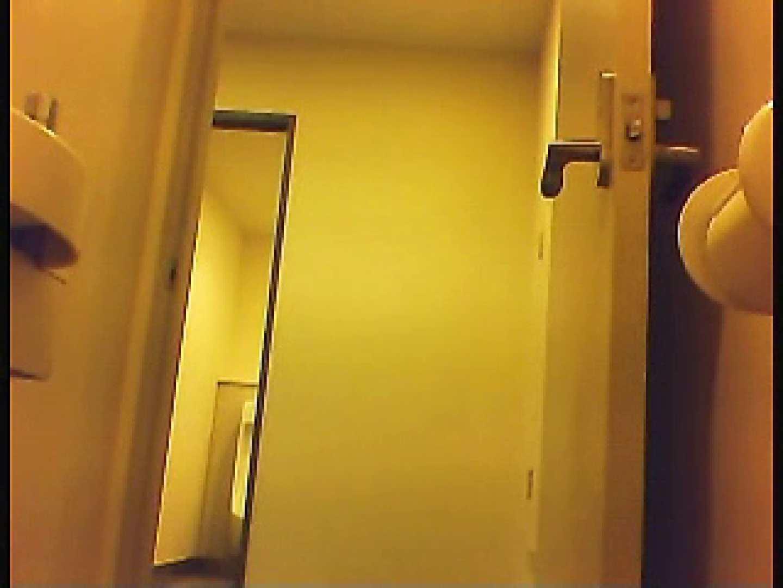 漏洩厳禁!!某王手保険会社のセールスレディーの洋式洗面所!!Vol.1 排泄   独占盗撮  66連発 37
