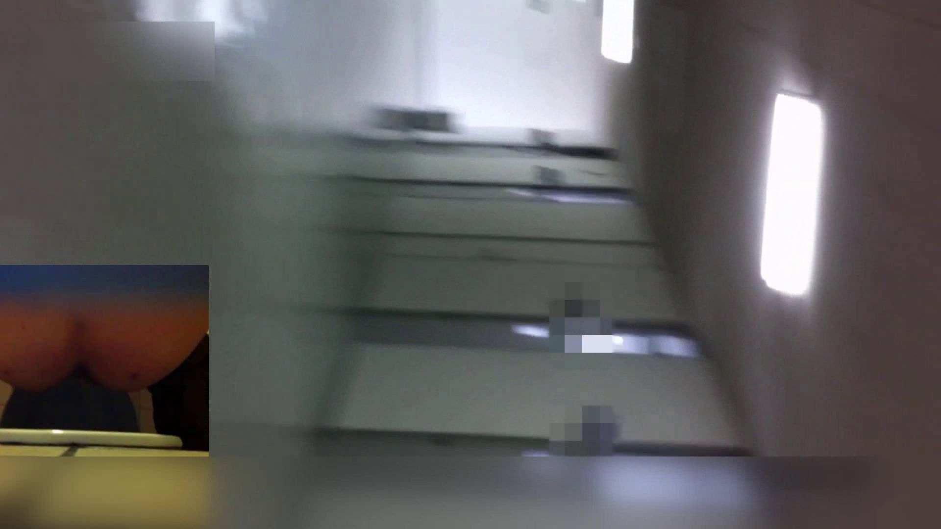 お姉さんの恥便所盗撮! Vol.24 お姉さん 盗み撮り動画キャプチャ 57連発 13